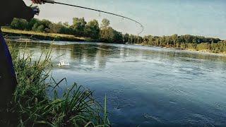 Рыбалка#Адыгея#Лаба#Жерех#октябрь#2016