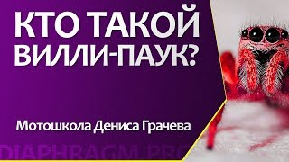 Стантрайдинг в Калининграде | Обучение | Вилли-тренажер