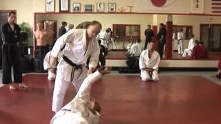 Goshin-Jutsu Training Seminars 2009 Troy J Price Action Clips