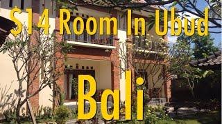 My $14 Room In Ubud, Bali, Indonesia - Nami House