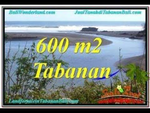 Affordable PROPERTY 600 m2 LAND SALE IN Tabanan Selemadeg BALI TJTB344