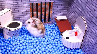 Hamster escapes the awesome maze for Pets in real life  in Hamster stories Part 2