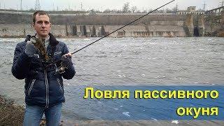 Ловля пассивного окуня | Рыбалка на Южном буге