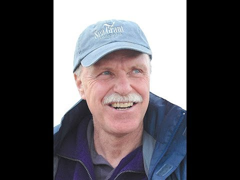 Ray Hilborn: Status of fish stocks