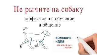 Не рычите на собаку. Методы эффективного обучение и общения