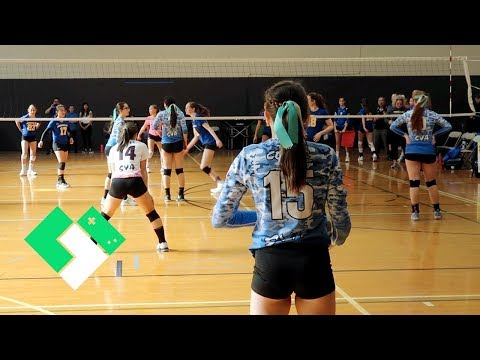 Championship Volleyball. Can They Win It All? | Clintus.tv