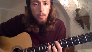 Animal Collective - Man of Oil (ACOUSTIC COVER)