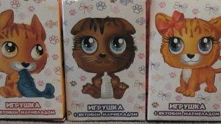 ПУШИСТИКИ Котята ФиШ ЛаКкИ КеТи Sweet BOX