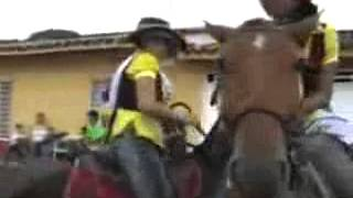 A horse trying to fuck a girl اسب حشری