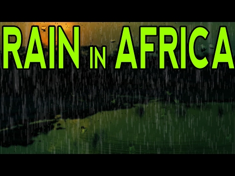 🎧 RAIN DOWN IN AFRICA | Rain Sounds for Meditation, Deep Sle