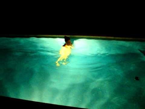 abdominales en la piscina youtube