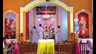 Malayalam  Holy Qurbana by Fr Aji Puthoor