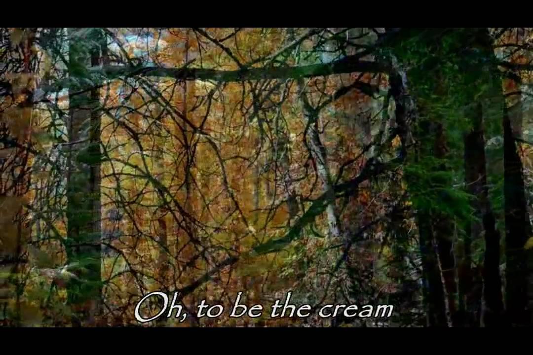 Bauhaus - All We Ever Wanted Was Everything Lyrics ...