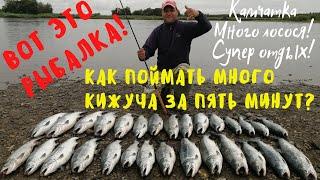Супер рыбалка на Камчатке Море кижуча Кижуч Сoho salmon Fishing Kamchatka
