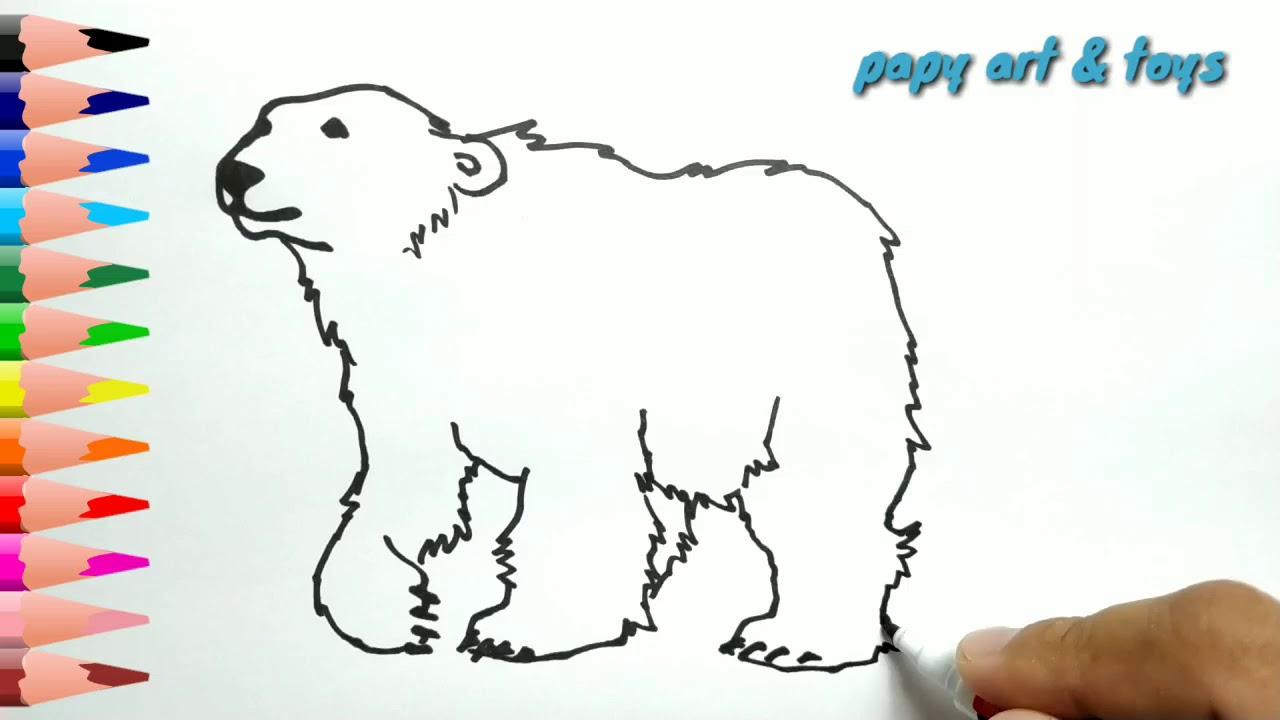 AJAIB Belajar Cara Menggambar Beruang Mewarnai Kartun Dengan Mudah Anak Indonesia Menggambar