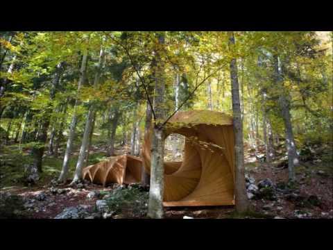 Jean Sibelius - String Quartet Op. 4 - 1^mov. - Allegro