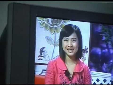 (Nhiều kênh) Tổng hợp tư liệu truyền hình được cắt từ một số video gia đình (2004 - 2010)