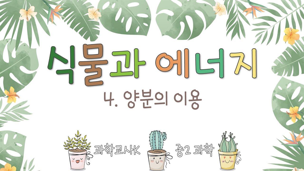 [중2과학] Ⅳ.식물과 에너지 - 4.양분의 이용