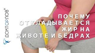 Почему откладывается жир на животе и бёдрах?