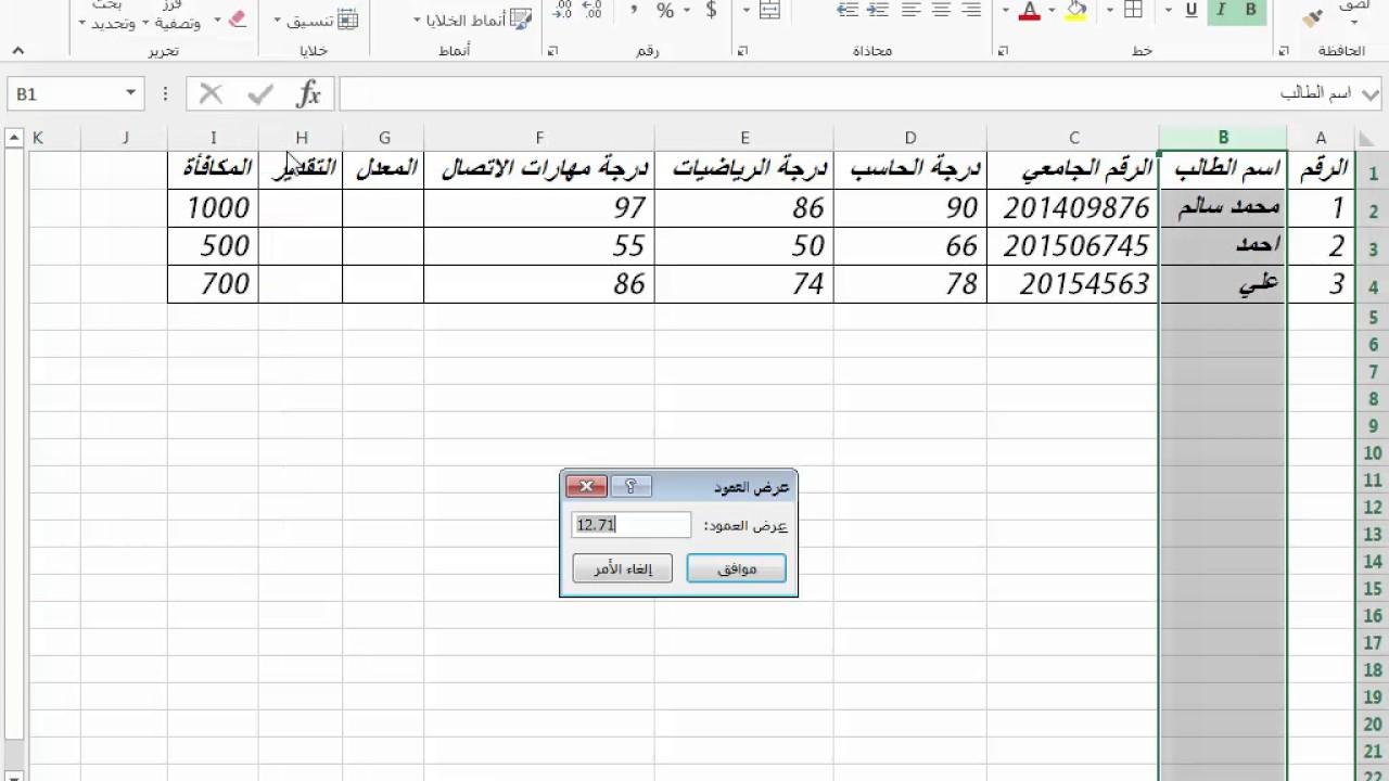 برنامج ادخال بيانات المرضى