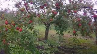 2012.10.26 All of Japan videos at the following URL http://www.yout...