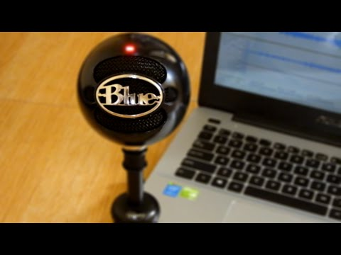 Blue Snowball - Mic Test (Voice & Instrument)
