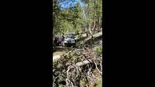 Roxor Winching Logs(2)