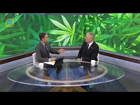 Bill Blair on Canada's plan for marijuana legislation | Your Morning