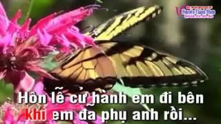 Karaoke tân cổ ĂN NĂN - Thiếu đào