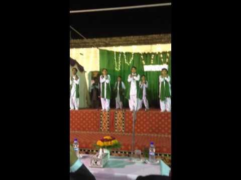 sadiq public school function