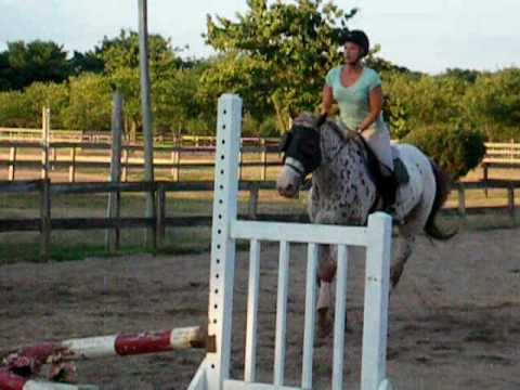 susan hunter jumping lesson adult.MOV