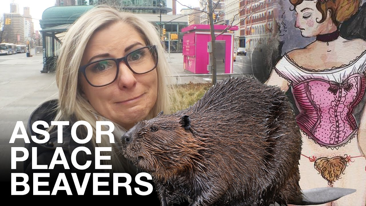 Whats Up With Those Astor Place Beavers Then Do You Know What A