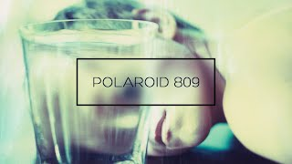 POLAROID 809 - 8X10 largeformat instant photography