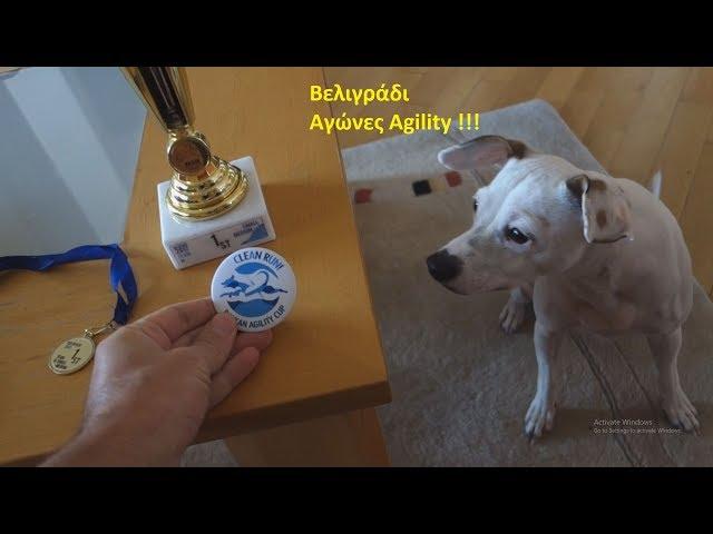 Σκύλος Dog Agility - Balkan Agility Cup 2017 | The trip | Κάτι σαν Vlog