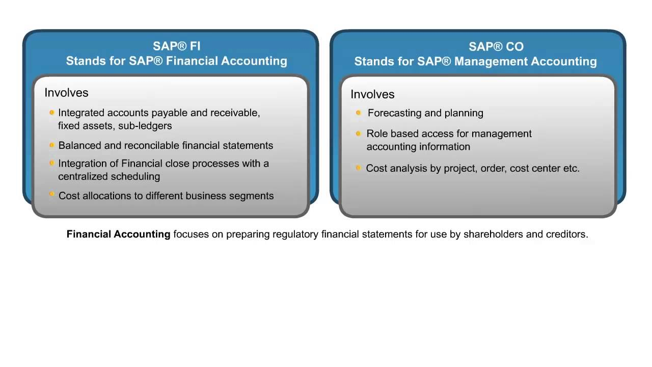 Introduction to sap fico consultant trainingsap financial introduction to sap fico consultant trainingsap financial accounting fi training onlinesap videos xflitez Images
