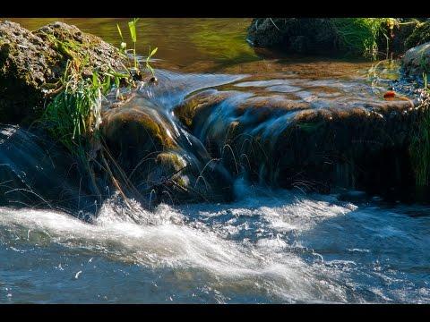 Wasser ist Leben - von RoHa-Fotothek Fürmann