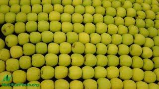 Jablka a pomeranče: pestrost stravy