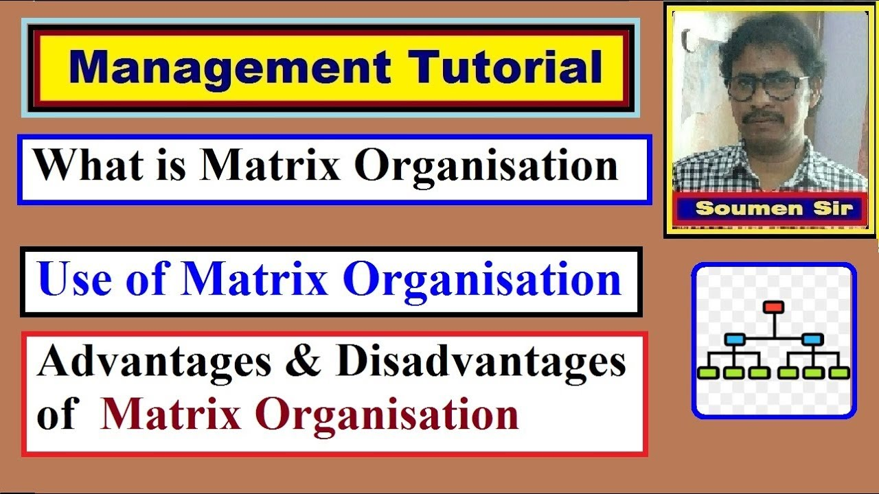 What is Matrix Organisation - Advantages and Disadvantages of Matrix Organisation. Mainly this Channel for Engineering Students, such as Btech/BE, Diploma Engineering (Polytechnic), ITI students. This Video Tutorial will be very helpful to .... Youtube video for project managers.