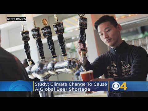 Scott Sloan - Report: Climate Change Could Raise Price Of Beer