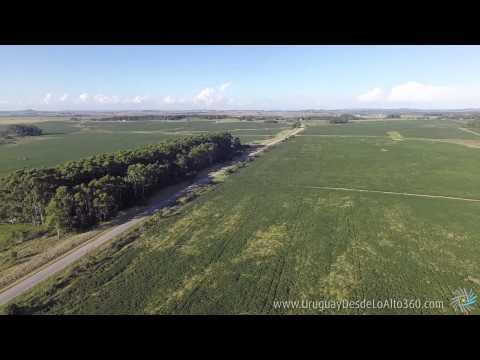 Video aéreo 360º en campos marítimos, Maldonado, Uruguay Desde Lo Alto