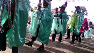 Danza 2015 el llano y anexas