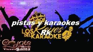 karaoke el coyote amor pajarito