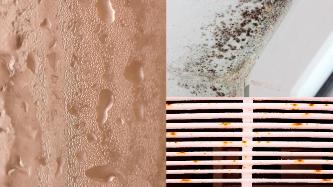 Productos para solucionar los problemas de humedad en casa - YouTube