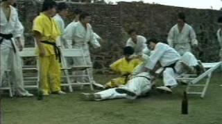 Bruce Lee (Türkçe)