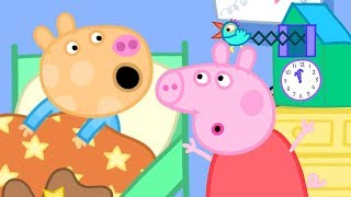 Peppa Pig Official Channel | Pedro is Late - Pedro Pony and Peppa Pig Special