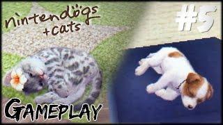 Nintendogs + Cats (Golden Retriever) Gameplay #5 [ITA]