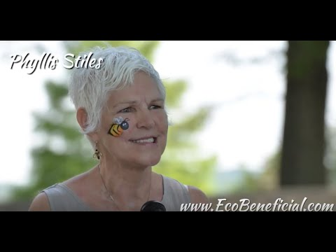 Interview With Phyllis Stiles, Founder Of Bee City USA