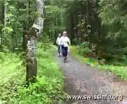 nordic walking übungen