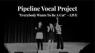 Everybody Wants To Be A Cat [LIVE] - Pipeline Vocal Project