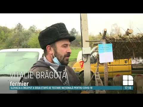 DIRECTIA PENTRU AGRICULTURA PRAHOVA